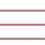 Client Survey 2020 stats